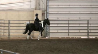 Continental Divide Horse Show
